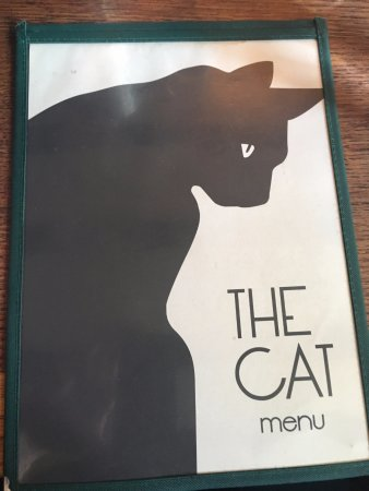 West Hoathly, UK: The cat