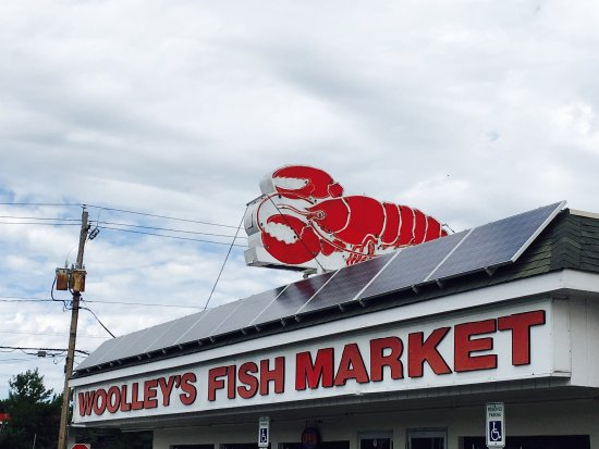 Woolley's Seafood House: photo0.jpg