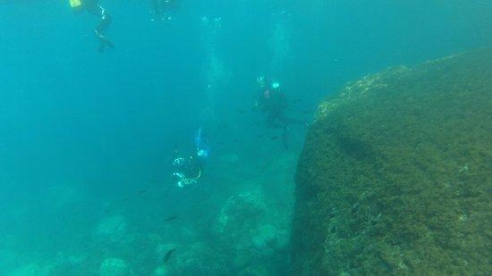 Openwater La Herradura: Acantilados