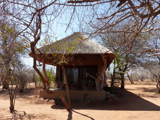 Tshukudu Marula Camp: Cottage, Marula Camp