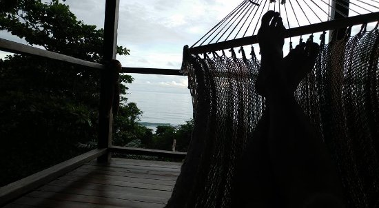 Carate, Costa Rica: View from the Hammock in the Monkey Room