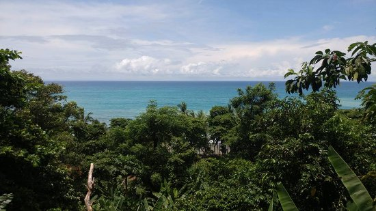 Carate, Costa Rica: View of the beach from the Lodge