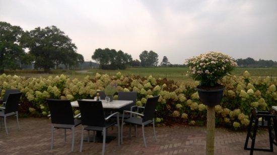 Brummen, Países Baixos: Uitzicht achter op het terras. Links de eeuwenoude eikenboom.