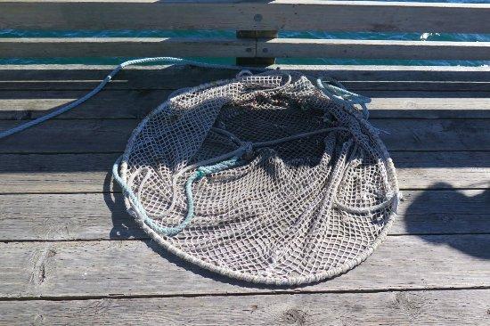 Discovery Fishing Pier: Landing Net