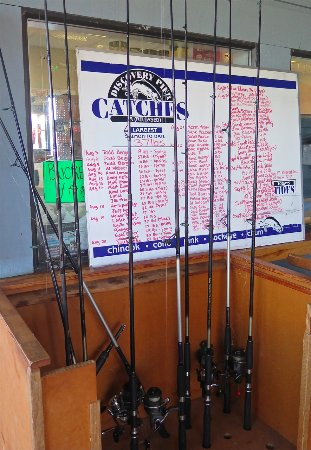 Discovery Fishing Pier: Catch Board
