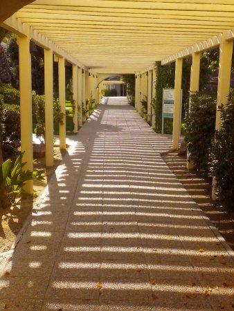 Holiday Village Manar: галерея на территории отеля