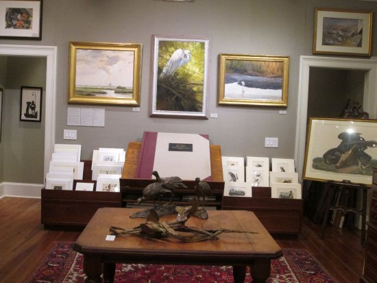 The Audubon Gallery