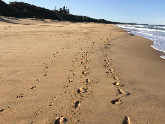 Diamond Beach, Australia: photo0.jpg