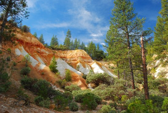 Nevada City, CA: The cliffs created by the 'monitors' use to wash away dirt and entire hillsides.
