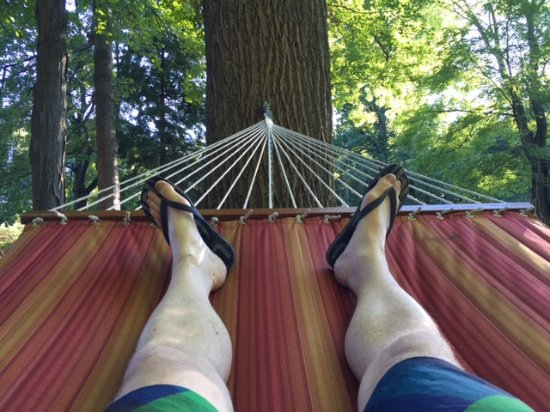 Saugatuck, MI: I could have spent the day in this hammock.