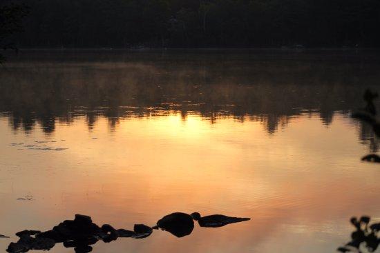 Greenville, ME: beautiful reflection
