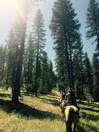 Greenough, MT: trail ride