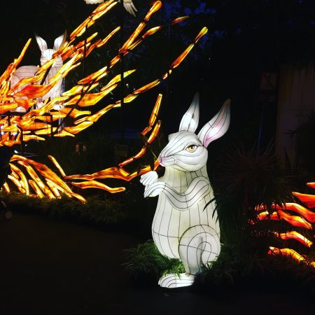Gardens By The Bay Mid Autumn Festival Lanterns Light Up   Until Mid  September 2016
