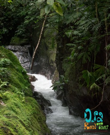 Drake Bay, Costa Rica: Our private waterfall