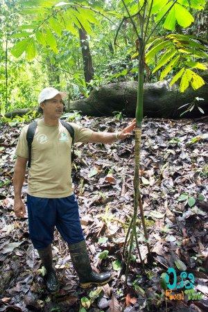 Drake Bay, Costa Rica: Descubre la Naturaleza