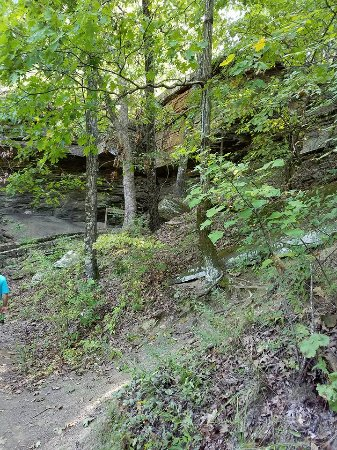 Heavener, OK: Rock crevices and trees