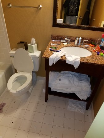 Radisson Hotel Rochester Riverside: The other side of the bathroom that wasn't cleaned as well