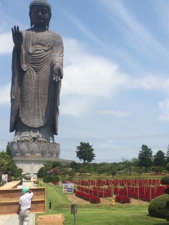 Buddha of Ushiku