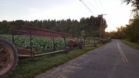 Suffield, CT: Farmers Field and Tractors
