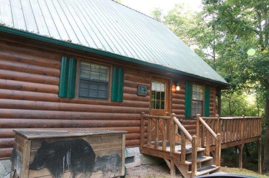 Morganton, GA: Outside view of cabin