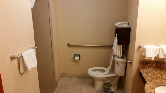 King Size, Handicap-Accessible Shower with Pull-Down Shower Chair ...
