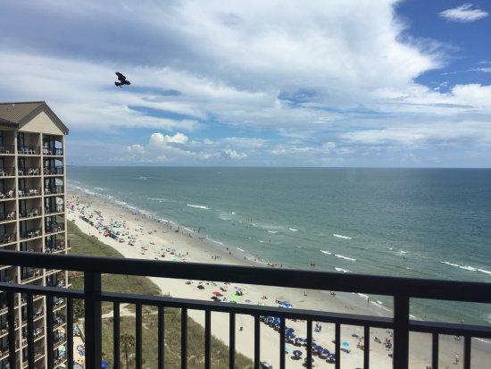 Foto de Beach Cove Resort
