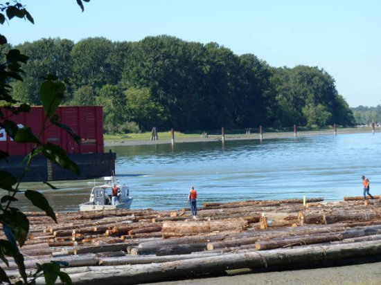 Surrey, Canadá: Workers on a log boom at Robert Point