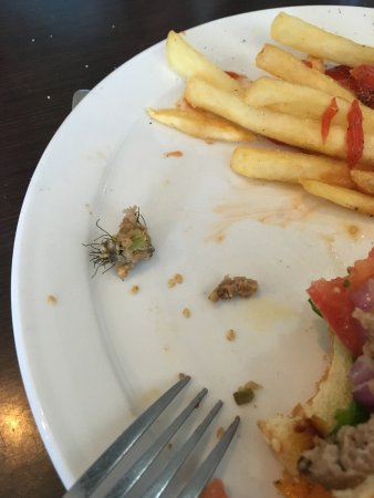 Killam, Canadá: Steel brush in my food