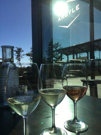 Argyle Winery: photo0.jpg