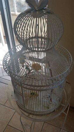 Browns Canyon Inn : Guard Bird at the front door