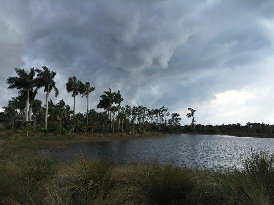 Naples Botanical Garden: walking trail on the outskirts before a little rain shower