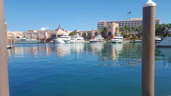 Atlantis - Harborside Resort: 20160904_101021_large.jpg