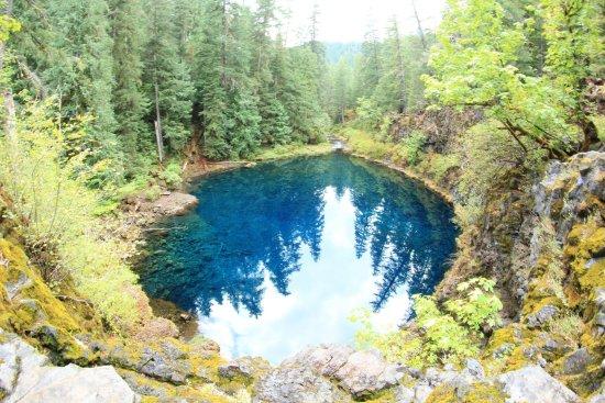 Tamolitch Pool Trail