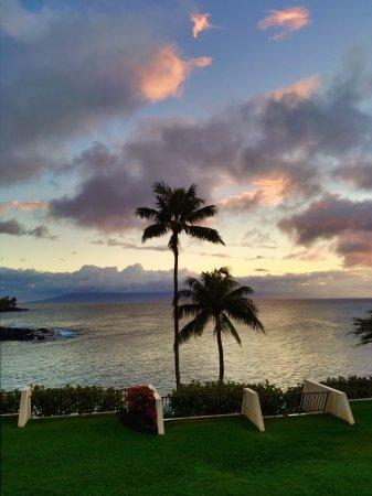 Napili Point Resort: photo0.jpg