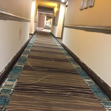 Trevose, PA: 4th floor hallway