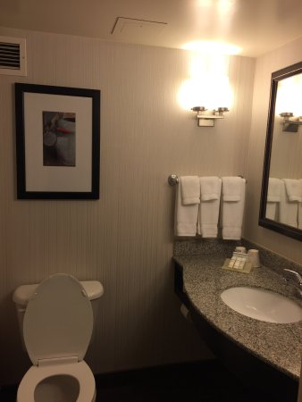 Hilton Garden Inn Hoffman Estates: photo1.jpg