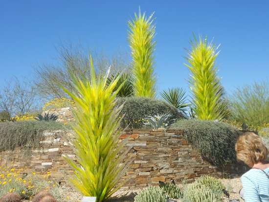 Chihuly permanent exhibit. - Picture of Desert Botanical Garden ...