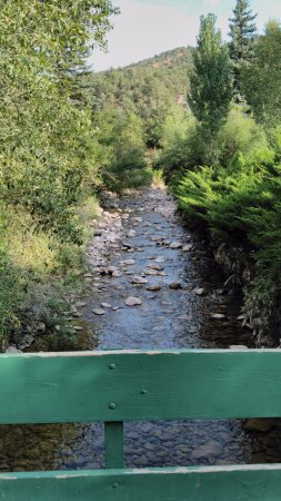 New Castle, CO: Slow flowing creek toddlers and teenagers can play in.