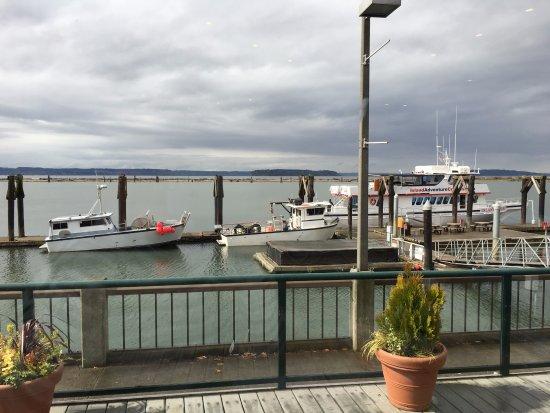 Everett, WA: Marina