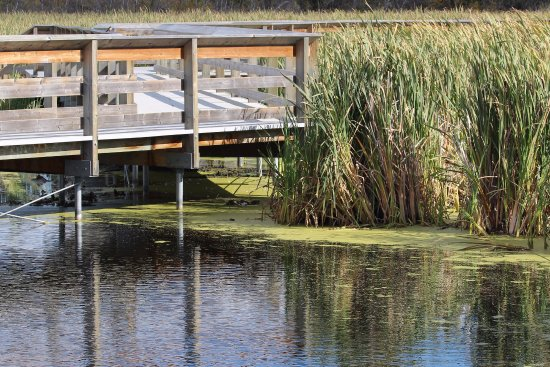 St. Albert, Canadá: Very picturesque setting for the John E Poole Interpretive Boardwalk.