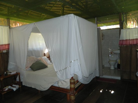 Amazonia Expeditions' Tahuayo Lodge: One bedroom with private bath at Tahuayo Lodge.