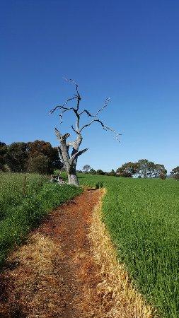 Burra, Avustralya: 20160911_095436_large.jpg