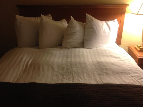 Quality Inn Tulalip - Marysville: this is how their bed is done before you even sleep on it