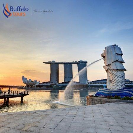 Buffalo Tours - Singapore