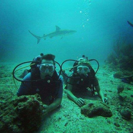 Simpson Bay, St. Maarten/St. Martin: IMG_20160905_132835_large.jpg