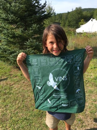 Quechee, Вермонт: Summer camps and regular visits to VINS!