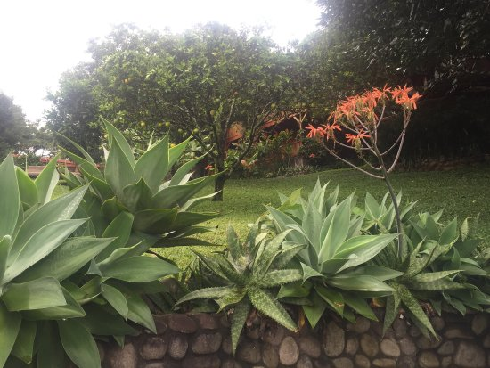 Arco Iris Lodge : photo3.jpg