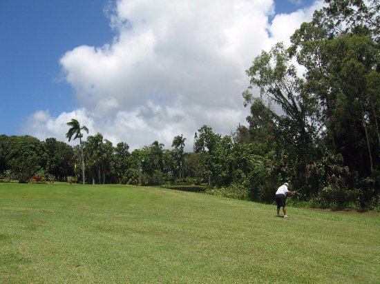 Kalaheo, Hawái: Fairways are wide and most have trees and plantings on the sides, not condos!