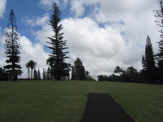 Kukuiolono Golf Course: Beautiful tee shot to well maintained fairways.