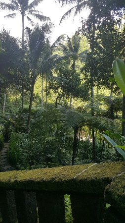 COMO Shambhala Estate: It's kind of neutral life be in Como and enjoy your life. one of best best luxury hotel in Ubud